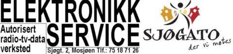 Elektronikk-Service